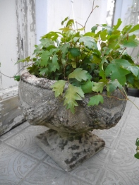 Antique Planter (756-20)