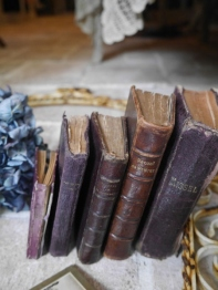 Antique Book Set (B-3)