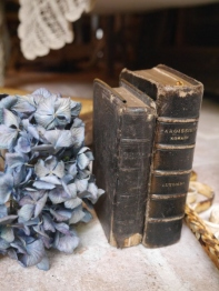 Antique Book Set (B-5)