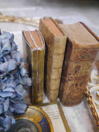 Antique Book Set (B-1)