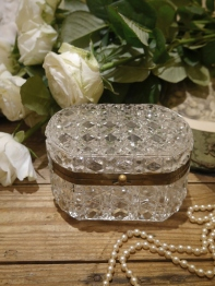 Antique Glass Case (B07-17)