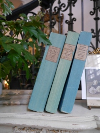 Three Blue Books (34201-13)