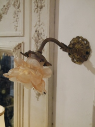 Rose Wall Light (EBF244)