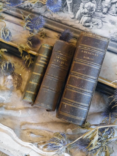 Antique Book Set (SK1073)