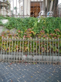 Iron Fence Set (683-20)