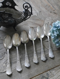 Spoon Set (TA077)